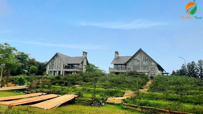 Jacaranda Valley ở Ba Vì