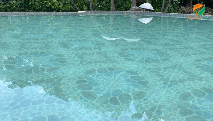 Bê bơi vô cực