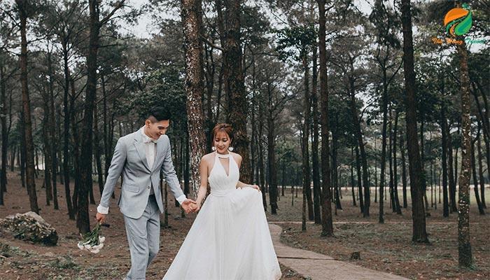 Chụp ảnh cưới ở đồi thông Ba Vì