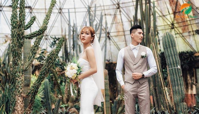 Chụp ảnh cưới ở nhà kính xương rồng - top 10 địa điểm chụp ảnh cưới