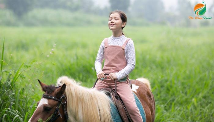 Tham gia hoạt động cưỡi ngựa ở nông trại Dê Trắng