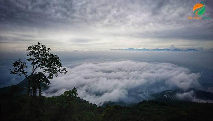 Săn mây trên núi Ba Vì