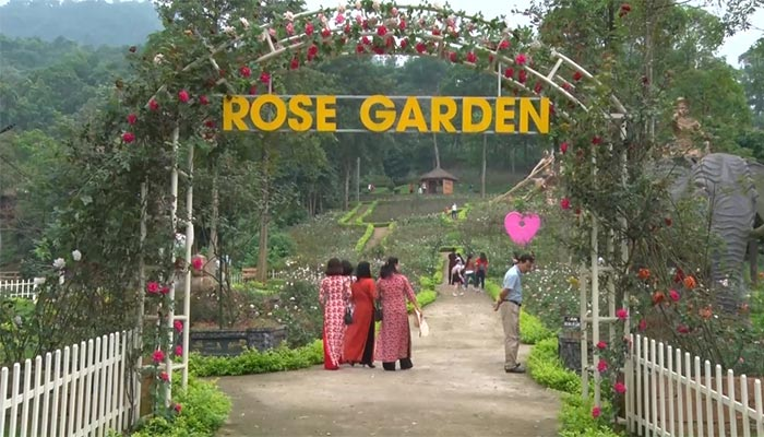 Vườn hồng tại Paragon Resort