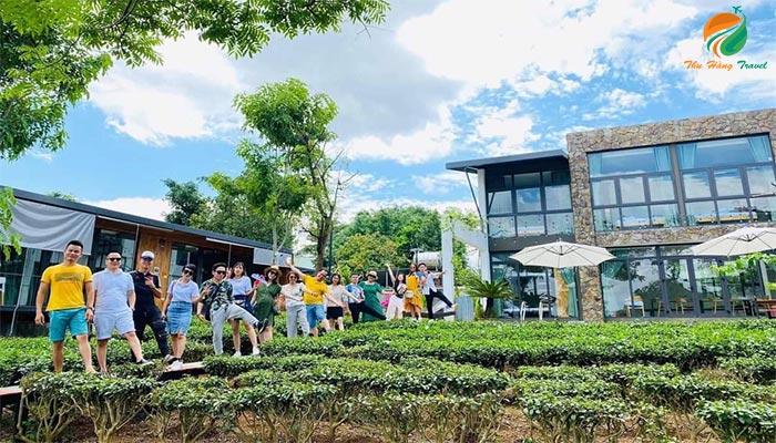 Khu Camellia Homestay thu hút nhiều du khách