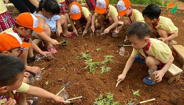 Trải nghiệm gia đình ở Eduland hoạt động trồng cây